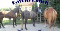 Payrits Ranch